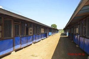 IDP 4